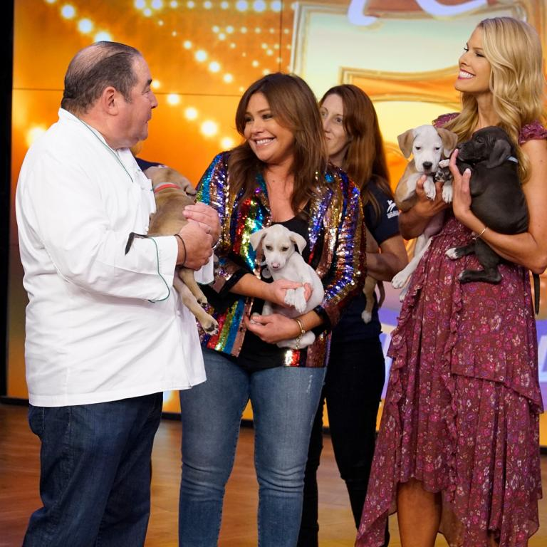 rachael ray emeril and puppies
