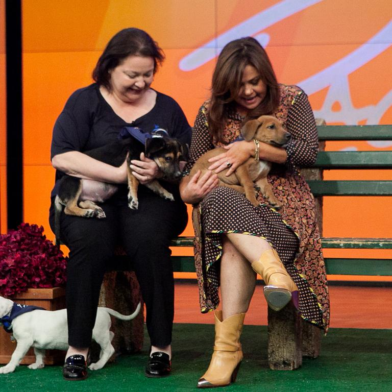 Rachael Ray + Rescue Dogs