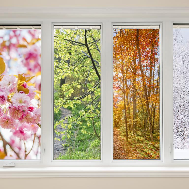 four windows showing all four seasons