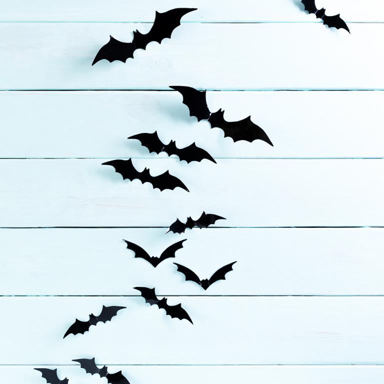 Halloween Bat Wall Decor