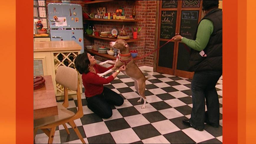 Rachael Ray and isaboo