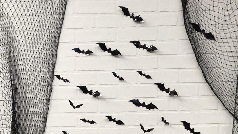halloween bat wall