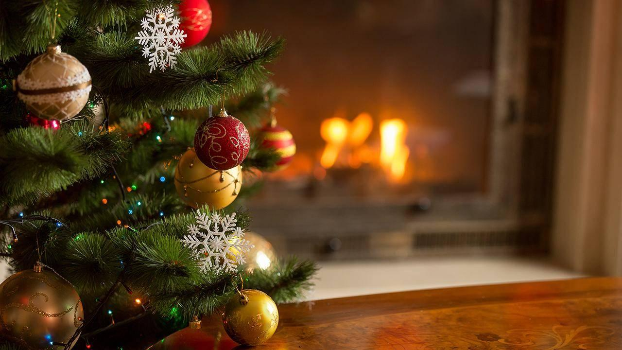 How To Decorate A Christmas Tree Perfectly Rachael Ray Show