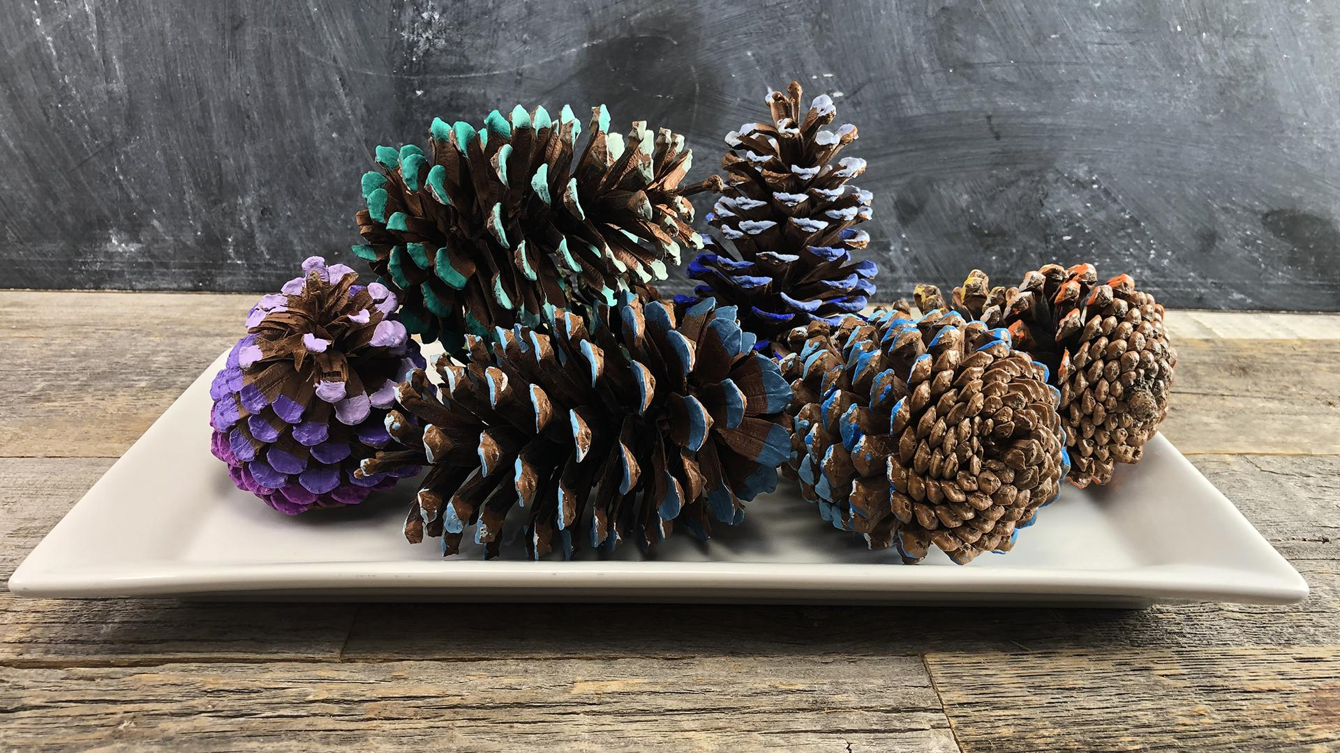 How To Diy Ombre Pine Cones In 3 Simple Steps Rachael Ray Show