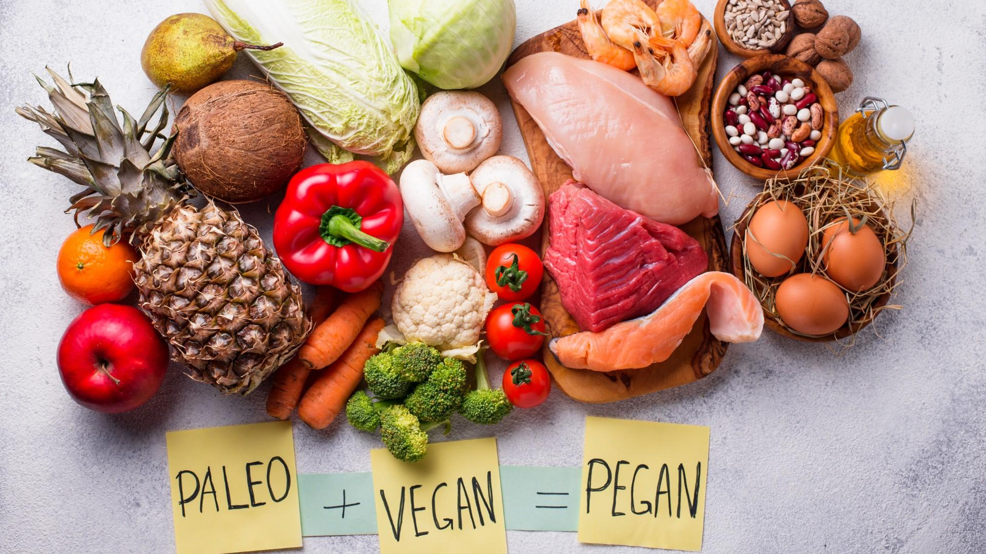 types of diets vegan paleo